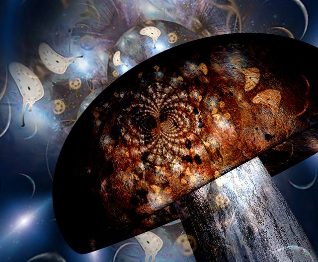 https://www.shroomsdeliverycanada.com/wp-content/uploads/2020/05/bigstock-Hallucinogenic-mushroom-and-me-368192620-e1590624571762-640x528.jpg